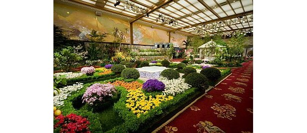 セレブ仕様の豪華な庭園!