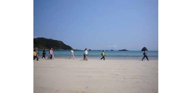 欧州の海浜保養地で盛んな海洋浴を伊豆で体験