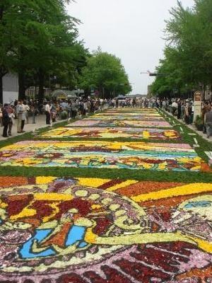 日本大通りフラワーアートフェスティバルは5/4(祝)まで