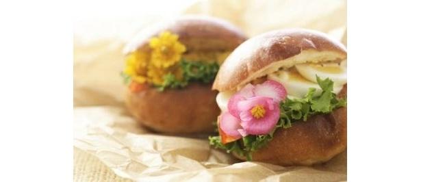 """かわいい!花のハンバーガー (ほか""""食べられる花""""使用例)"""
