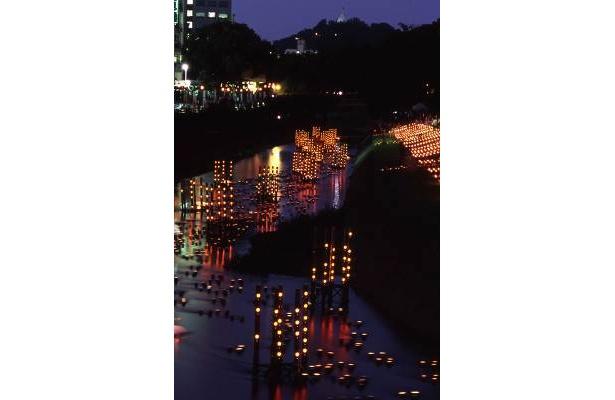 坪井川の水面に映る灯りが情緒豊か