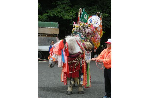 鈴かけ馬踊りでは、花や錦を飾りつけた鈴かけ馬がリズミカルに踊る