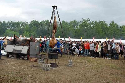 【白老】「インディアン焼き」は牛の脚を4m上からつるし10時間ほど鉄板で囲んで焼き上げるもの