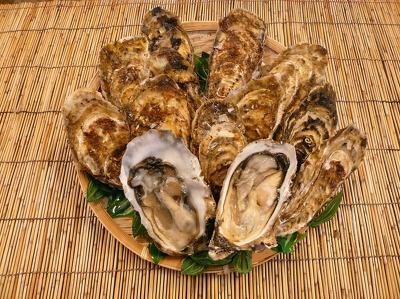 【寿都】6〜7月中旬が食べ頃の寿(ことぶき)カキ。甘味も鮮度も抜群