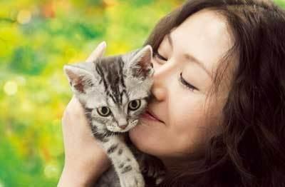 (C)2008『グーグーだって猫である』フィルム・コミッティ