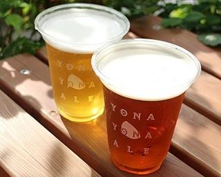 限定ビール「ガーデン・セッション」(700円)をはじめ、全6種類のビールが生で味わえる