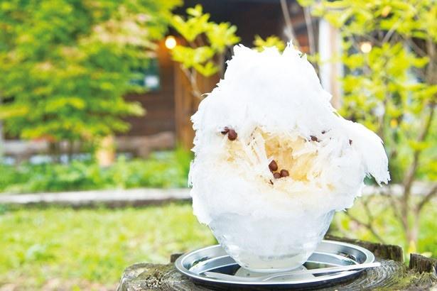 うどんカフェ 何時も庵のかき氷「小豆と寒天+三温糖シロップ」(900円)。プルプルの寒天に積もる、初雪氷を味わおう