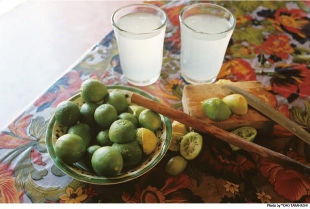 ソルティライム ソーダは、メキシコのスタミナドリンクをヒントに作られている