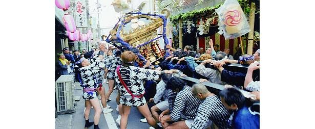 """インフルに負けない!?「千住天王祭」では激しい""""神輿振り""""が見られる"""