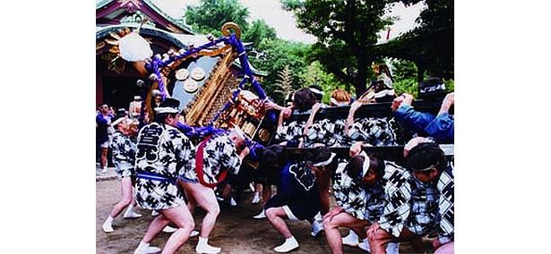 """町内神輿が通称""""こつ通り""""に集まるのも要チェック!(千住天王祭)"""