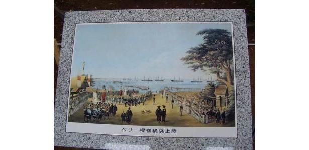 ペリーが上陸した時に描かれた絵にも玉楠が。このへん、海だったんだ〜