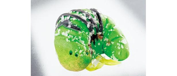 和菓子の「イモ虫ゴロゴロ4兄弟」220円