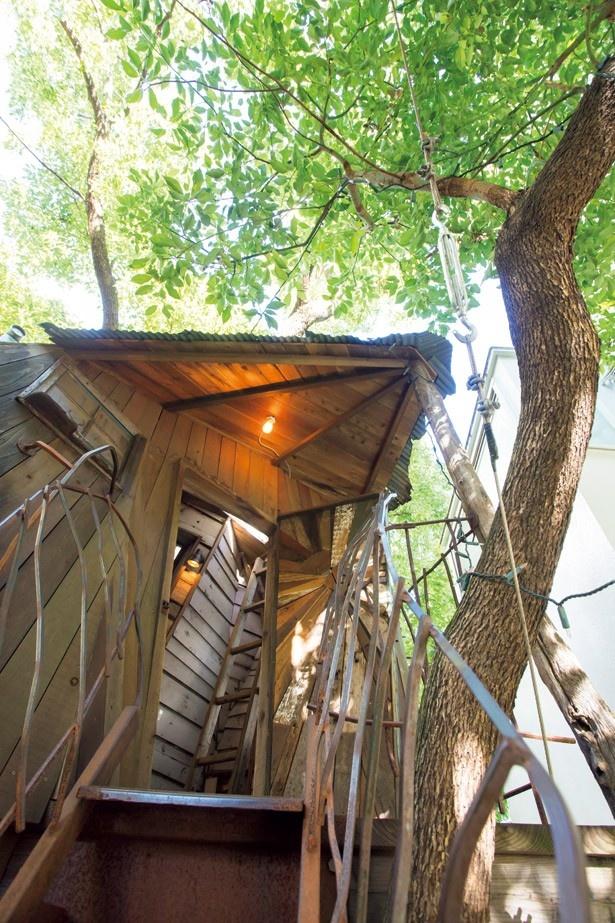 アーヴィングプレイスでは、1階のセレクトショップの中庭に、ツリーハウスへ続く秘密の階段がある