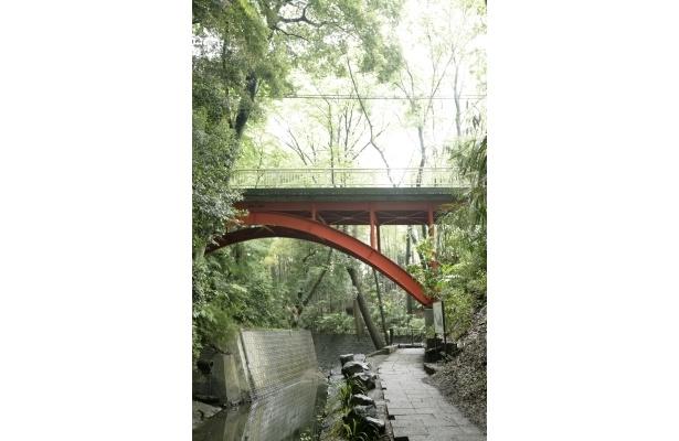 川には橋や木の板が渡してある