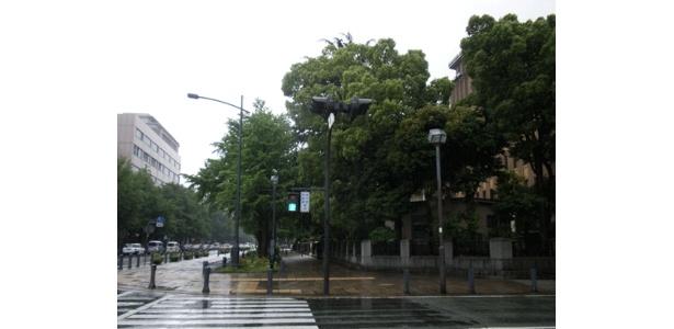 象の鼻パーク日本大通り入口…はどこ? と思う方は、背後の県庁が目印