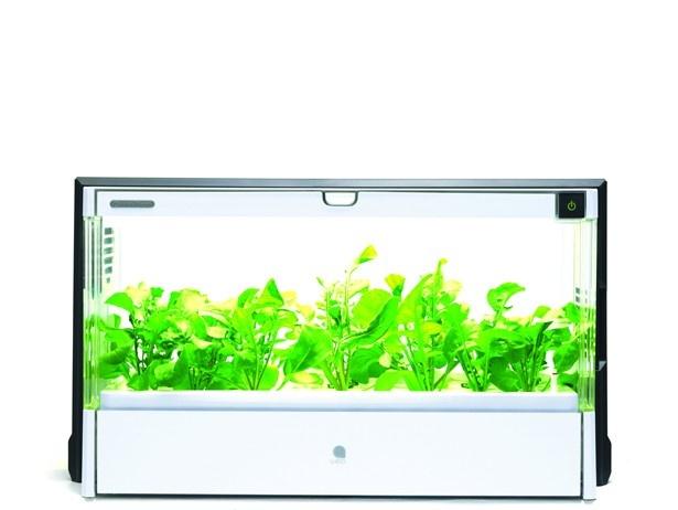 【写真を見る】今注目のヘルシー家電「Green Farm」(オープン価格)が二子玉川の蔦屋家電に登場