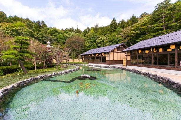 食事処からは、風情ある日本庭園を一望できる