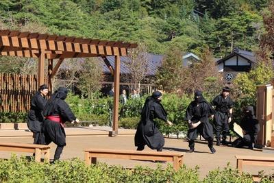 日本庭園では忍者ショーを不定期に実施!迫力あるパフォーマンスは必見だ