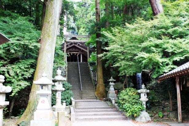"""【写真を見る】""""九州の伊勢""""と呼ばれる「伊野天照皇大神宮」。天照大神を祀っていて、神殿や建物の配置も伊勢神宮を模して築造されている"""