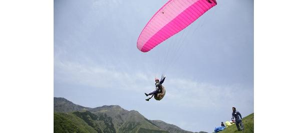 じょうずに風にのれば、70mくらいの距離を飛べます