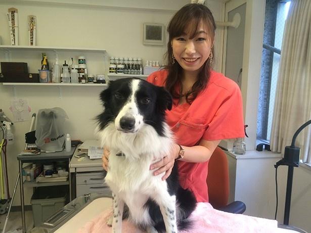 ペットと飼い主に寄り添って治療をしてくれる中桐由貴医院長