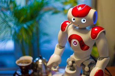 【写真を見る】なでると仲良くなれるロボットまで!? フランスのAldebaran Roboticsが開発した「NAO」 写真提供:ロボットスタート株式会社