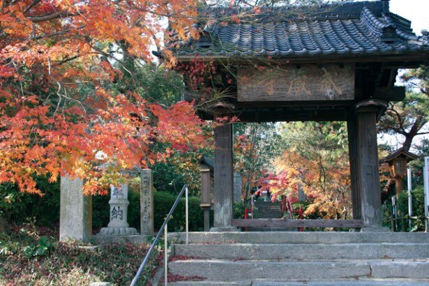 飛鳥時代に建立されたといわれる九州最古の寺「武蔵寺」。11月下旬まで紅葉が見頃