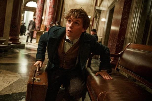 「ハリー・ポッター」の新シリーズ『ファンタスティック・ビーストと魔法使いの旅』の主人公ニュート・スキャマンダー。このスーツケースに秘密が?