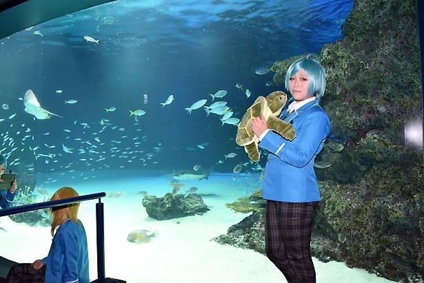 コスプレ×水族館!幻想的な空間で貸切撮影を満喫