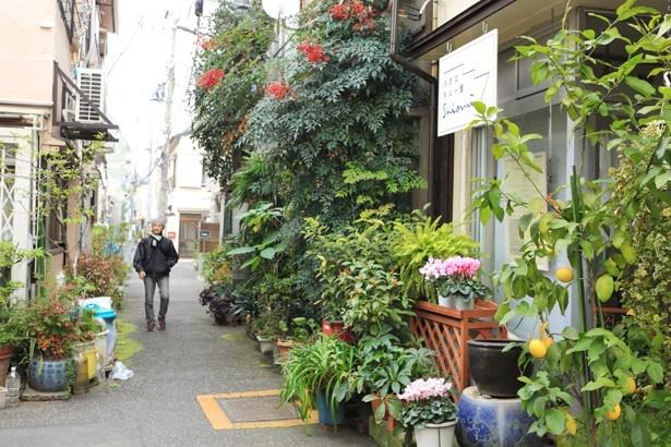"""文京区の""""谷根千""""エリアの路地。大通りから1本路地に入ると隠れた人気店がそこかしこにある"""