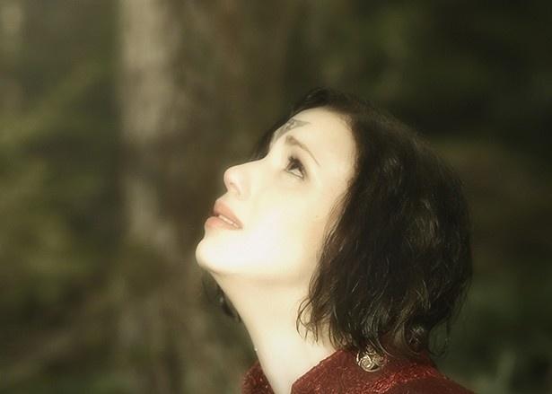 押井守×鈴木敏夫「ガルム・ウォーズ」5月20日公開