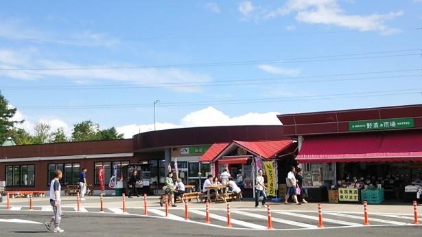 【写真を見る】北海道ならではの土産が豊富に揃う輪厚PA