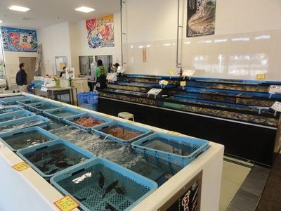 新鮮な魚を購入できる「姫路とれとれ市場」