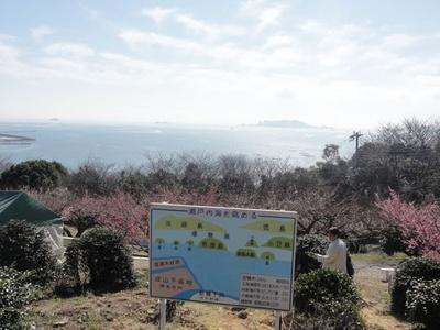 瀬戸内海を眺めることができる「綾部山梅林」