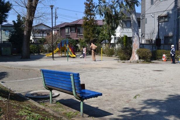 住宅地に囲まれ、のんびりとした時間が流れている「阿佐谷けやき公園」