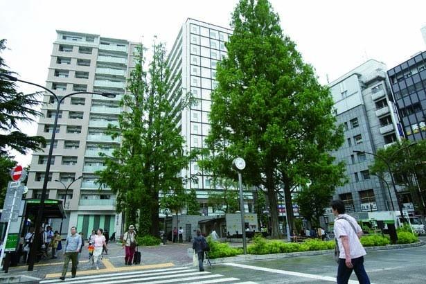 阿佐ケ谷駅南口前の広場は、ベンチもあり、阿佐ヶ谷住民の憩いの場として親しまれている