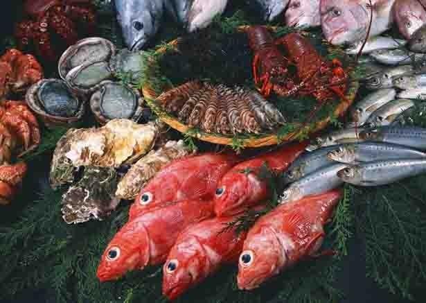 神奈川県初出店の「魚耕」は東京杉並を拠点とする人気の鮮魚専門店。