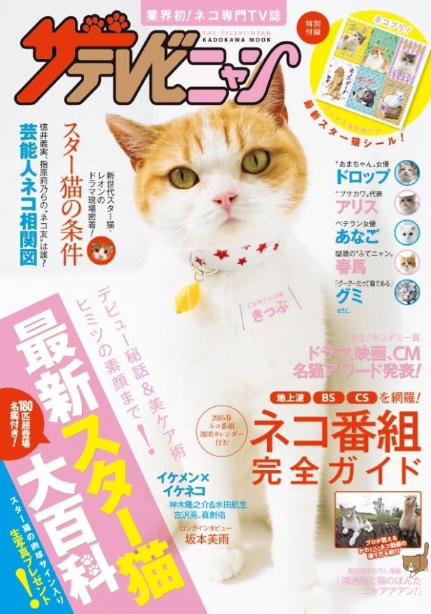 テレビ誌「ザテレビジョン」から、ネコ専門テレビ誌発売!