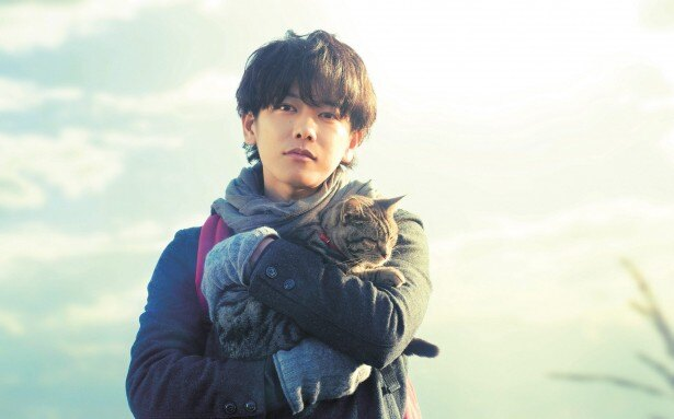 【写真を見る】佐藤健がネコを抱っこする姿にファンもメロメロ?