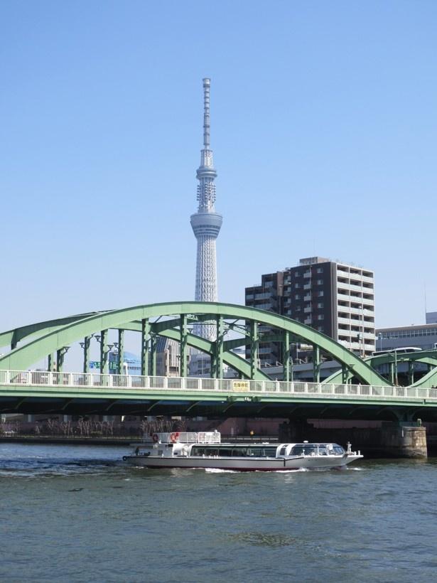 川沿いで見る東京スカイツリーは電線もなく見晴らし抜群