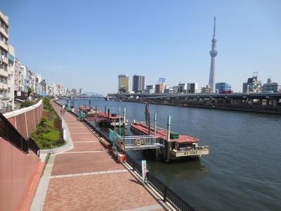 江戸の情緒を感じられる屋形船も出航(「隅田川」)