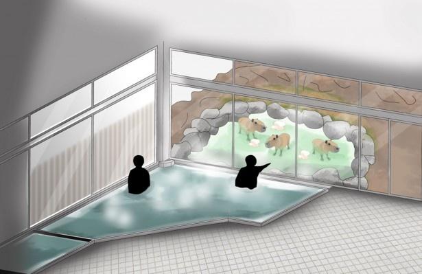 【写真を見る】カピバラと一緒に入浴している気分を味わえる