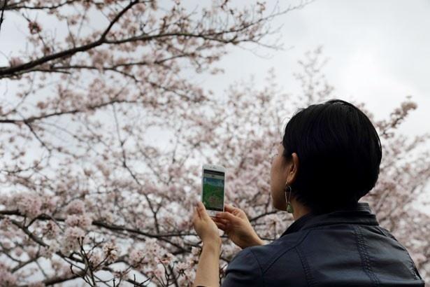 【写真を見る】手描きの美しい京都鳥瞰図を、スマホで手軽に持ち歩こう