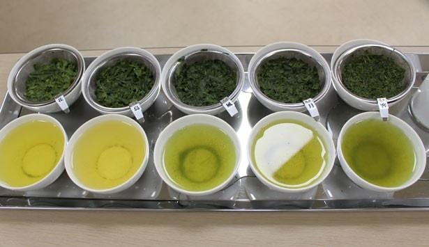 「花」や「鳥」などと名付けられた、5種類の茶葉を拝見。並べてみると、色の違いがはっきりわかる