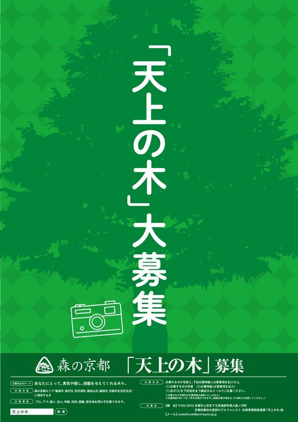 """あなたの特別な""""天上の木""""が京都府HPに掲載されるかも"""