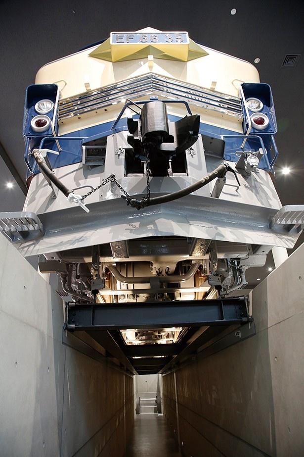 【写真を見る】車両の床下に潜って見学できる「かさ上げ展示」。2両ある機関車の違いも見比べてみよう