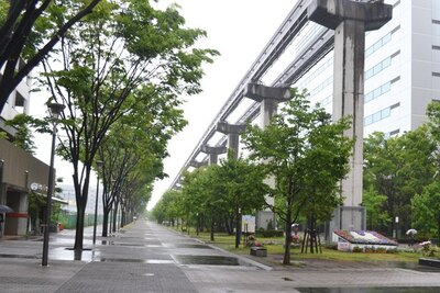 遊歩道として整備されている、多摩モノレールの高架下