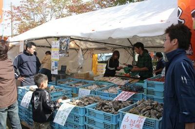 厚岸産の新鮮な殻ガキを販売。貸し焼き台は¥800〜
