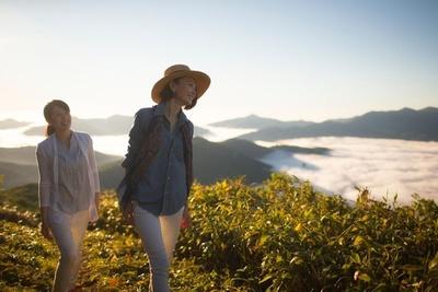 雲海テラスから360度の大パノラマが広がるトマム山山頂まで散策する、約40分の軽登山もおすすめ(雲海ゴンドラ山頂駅舎で登山届の記入が必要)
