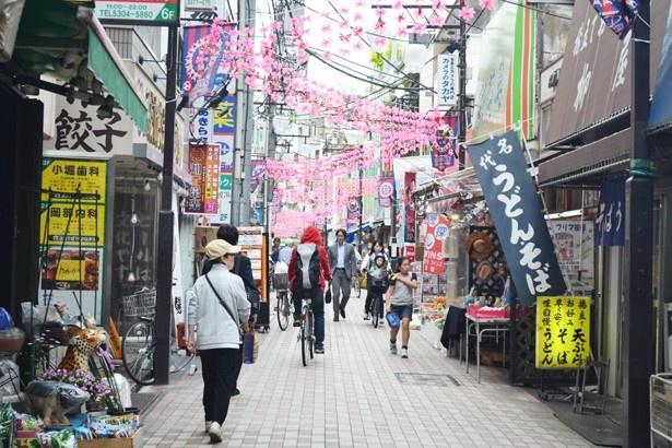 多くの買い物客でにぎわう笹塚の「十号通り商店街」。笹塚・幡ヶ谷周辺は10を超える商店街があり、各商店街でイベントを行うなど、どこも活気にあふれる